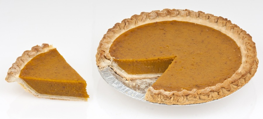 A Slice of Pumpkin Pie!