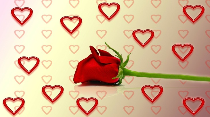 rose-260821_1280 (1)
